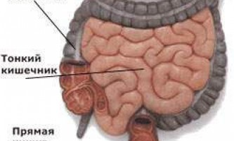 Болі в кишечнику: причини, симптоми і лікування захворювань