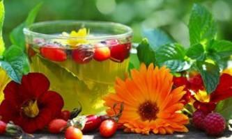 Дренажні напої для схуднення: відгуки та рецепти в домашніх умовах