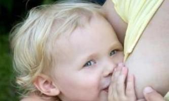 Як припинити лактацію безболісно для матері і дитини?