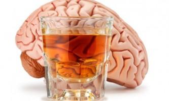 Як впливає алкоголь на мозок людини?