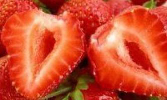 Полунична дієта