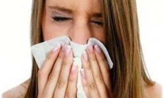 Лікування медом застуди