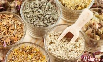Незабутні рецепти народної медицини - народна медицина, траволікування, температура, кропив`янка, лікарські рослини