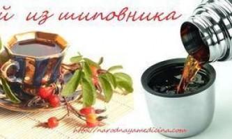 Про користь плодів шипшини плюс рецепти