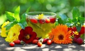 Трав`яні чаї на всі випадки життя: топ кращих рецептів